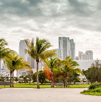 MiamiStorm