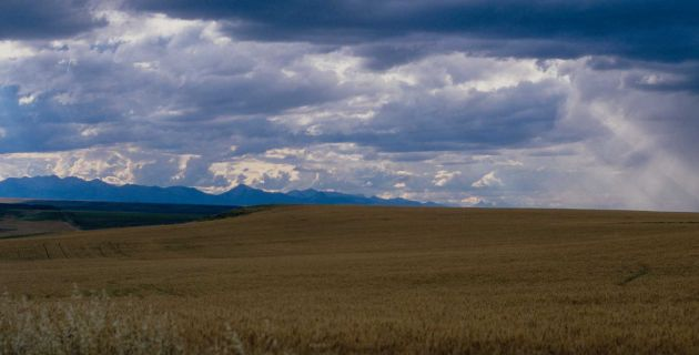 Blackfeet Nation, Montana prairie